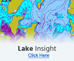 Lake Insight